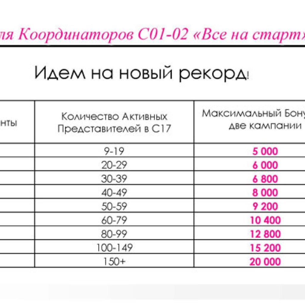 программа для координатора Эйвон в 1-2 каталоге 2016