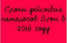 Сроки действия каталогов Эйвон в 2016 году
